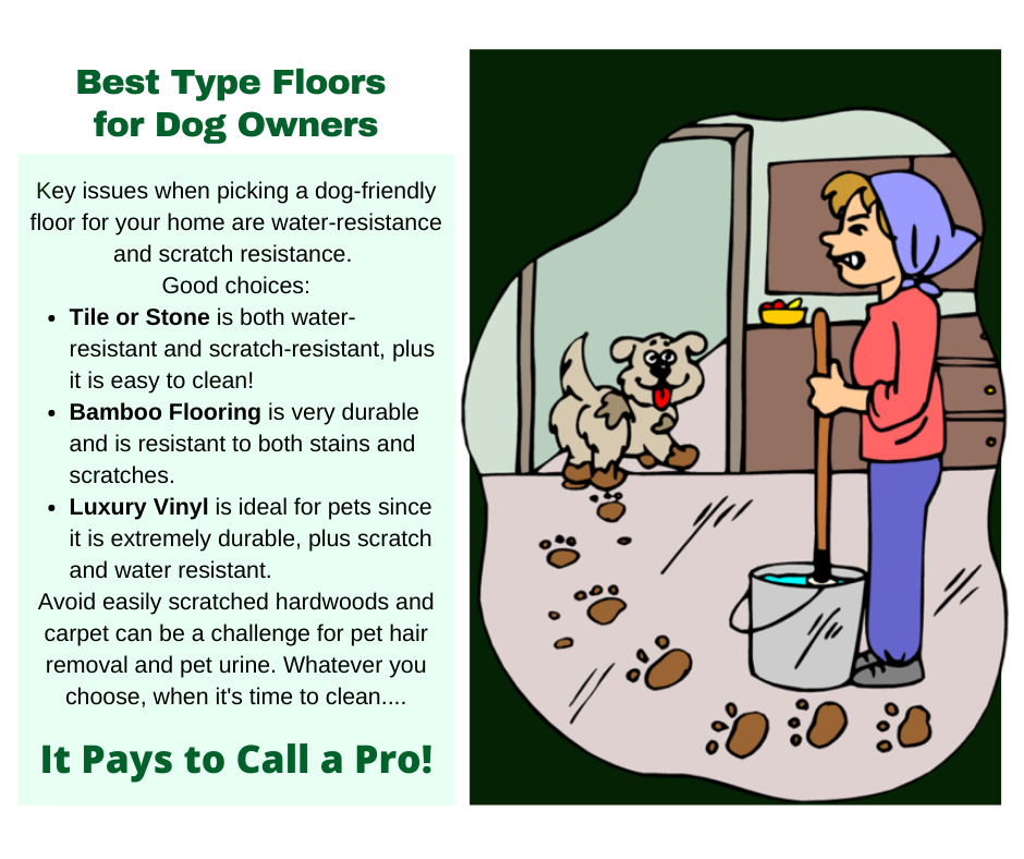 Melbourne Victoria Australia - Best Floors for Dogs